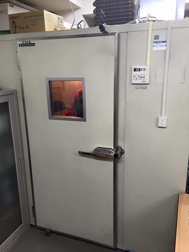 冷凍庫の中で観察